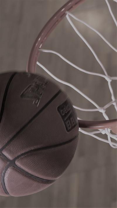 projekt basketball